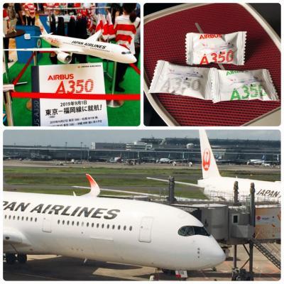 エアバスA350に初乗り♫台風と弾丸福岡旅の1