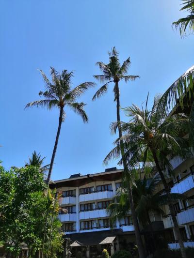 (8日目 ついに最終地 サヌールへ )この夏 2回目のバリ島 とにかくのーんびり…ゆ~っくり