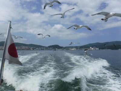 ダイヤモンドプリンセスで夏の北海道へGO☆⑤小樽でカモメに遊んでもらう