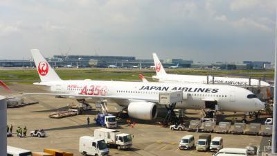JAL エアバスA350-900搭乗目的 東京1泊2日の旅【ホテルから羽田空港へ移動と、空港内散策編】