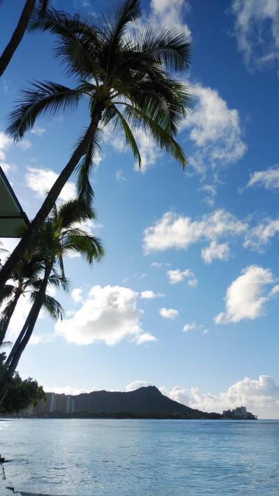 フライングホヌ・ファーストクラスで行くハワイ2019 ⑤