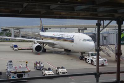 シンガポール航空ビジネスクラスで南アフリカ、リタイヤしたので気ままな個人手配旅行、関空~シンガポール