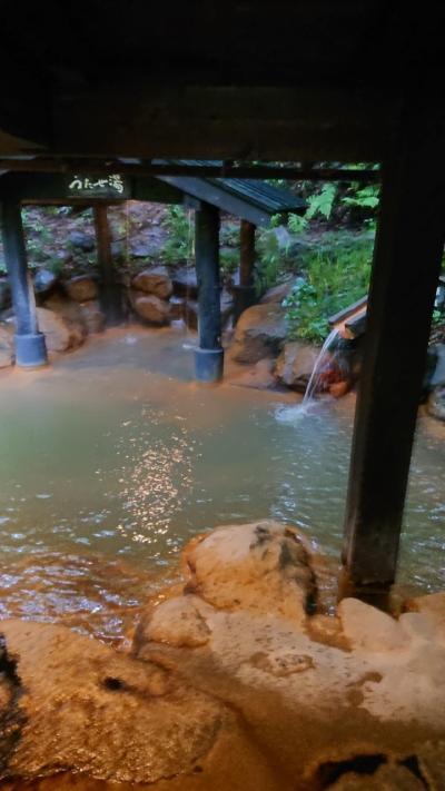台風17号九州直撃の中研修医時代のリベンジ黒川温泉まず日本秘湯を守る会山河旅館さんでランチ付き硫黄香る入浴