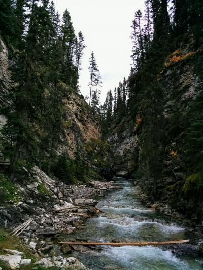 カナダオーロラとカナディアンロッキーの旅 9