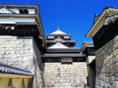 四国旅2~3日目〈温泉!お城!動物園!好天に恵まれたツケは、最後の最後にやって来た〉