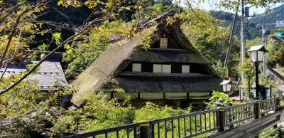 東京の秘湯入浴&奥多摩ドライブの旅(蛇の湯温泉たから荘)