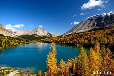 快晴のスコーキー・ジガディナス (Zigadenus Lake) & ミオソティス (Myosotis Lake)