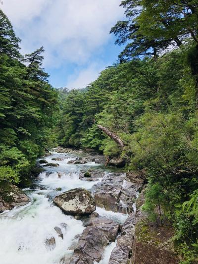 屋久島なんとか3日目はお天気よかった!
