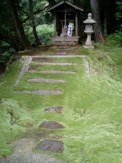 苔が美しい神田神社と曼陀羅山の金比羅宮