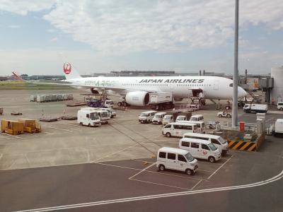 A350に乗ろう!
