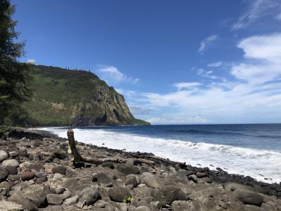 2019年9月 大人4人の詰め込みハワイ島旅 ⑦ワイピオ渓谷&BBQ