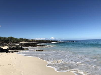 2019年9月 大人4人の詰め込みハワイ島旅 ⑨クアベイ&帰国&費用