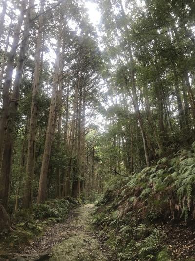 大学生のうちに行きたい!!国立公園巡り第1弾!伊勢志摩国立公園2日目