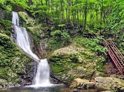奥多摩・秋の大岳山を歩く