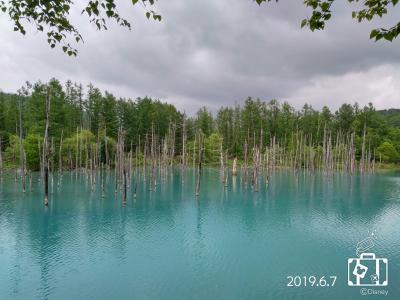 YOSAKOI ソーラン と ウニ三昧 ② ~水が無ければ池じゃない~