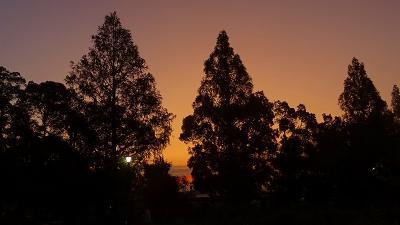 早朝散歩 天神川に架かる北辰橋から荻野・北野・荒牧南・荒牧と回りました その1。