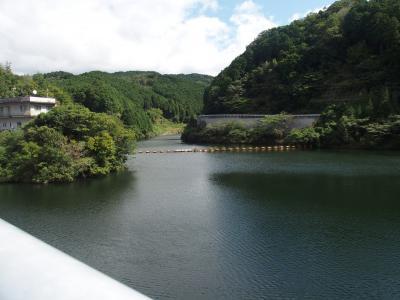 滝川ダム・比自岐コスモス・青蓮寺湖ぶどう狩り第3回2019