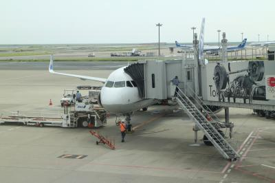 NH395便、羽田→庄内、A321(JA132A)機内は快適だが、悪天候と揺れのショートフライト。