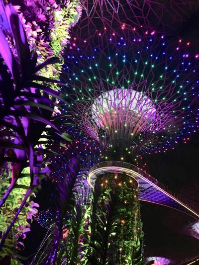 アラ還姉妹のシンガポールMBSにステイ⑤ ガーデンラプソディとジュエル・帰国