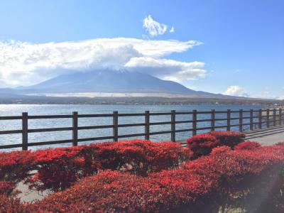 山中湖&忍野_Lake Yamanaka & Oshino  芸術と信仰の舞台!霊峰富士をとりまく湖と湧水