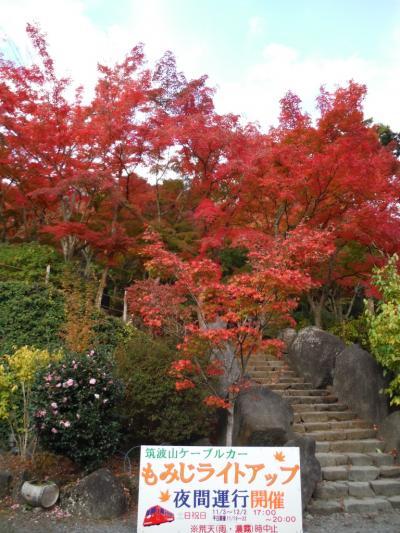 つくば_Tsukuba 『西の富士、東の筑波』!秋には紅葉も楽しめる学園都市