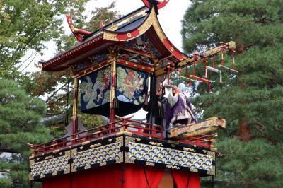 秋の高山祭(八幡祭)・早朝の八幡宮参道「屋台曳き揃え」は、おすすめです 飛騨高山(2/2)2019