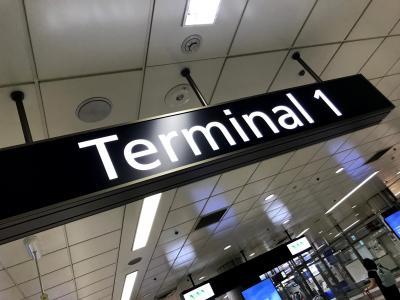 【2019 ハワイ】Leg.1 始発列車で成田空港へ&東海道線・朝ラッシュ乗車レポート