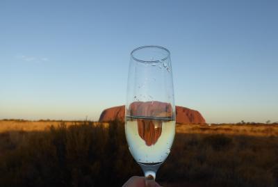 南半球初訪問☆オーストラリアの大自然&もふもふに癒される旅④エアーズロック1日目