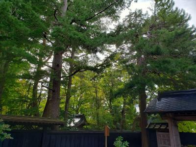 秋田 田沢湖・角館の旅