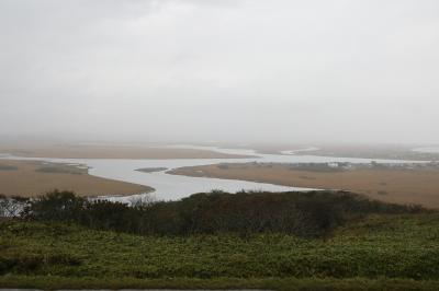 10日間釧路に滞在して道東巡りの旅(その5,納沙布岬・霧多布湿原観光)