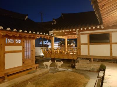 慶州・釜山2泊3日①