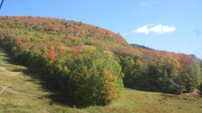 錦秋のカナダ・メープル街道を行く(2)‐1 冬はスキーで賑わうローレンシャン高原は秋真っ盛り!