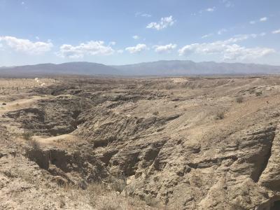 サンディエゴ近郊ドライブ:アンザボレロ砂漠州立公園、ラ・ホヤ、ジュリアンなど