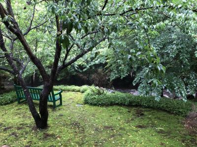 黒川温泉、深山山荘宿泊と和田門ディナー の旅