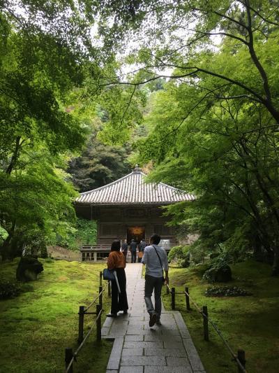 平泉・仙台・鳴子のちょっと紅葉には早い旅