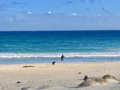2019年夏~イースター島・サンティアゴ10日間⑥半日ドライブとハンガロア散策