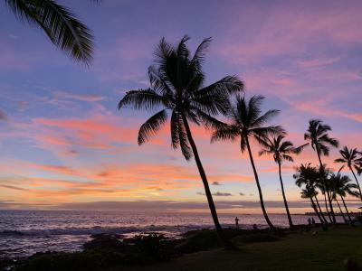 ハワイ島/クラフトビール堪能の旅 コナリーフ