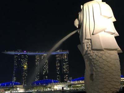 2度目のシンガポールを満喫してきました1日目&2日目