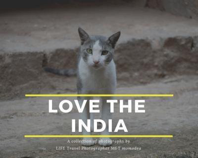 インドの田舎:ドライブ旅行記 ~Extra edition~