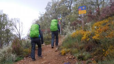 アンダルシアの春祭りから銀の道、そして巡礼の道を歩く 1 まとめ
