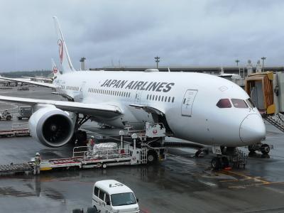いまさら...JAL JGC インド発券で修行♪ ビジネスクラス搭乗記 JL Japan airlines