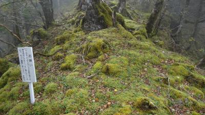 四国剣山10月 穴吹川源流の修験者行場コースを歩く