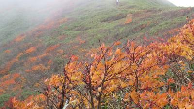 山形県楽しむ (1) 月山