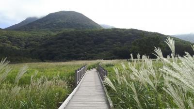 伐株山~タデ原