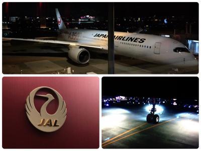 エアバスA350に初乗り♫台風と弾丸福岡旅の2