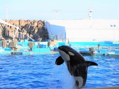 2019年10月 名古屋港水族館でプチ寄り道旅