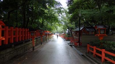 【京都 一人旅】0泊3日の弾丸開運ツアー!神社仏閣めぐり③