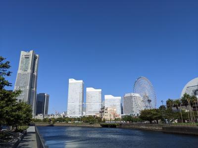 東京・横浜②~何回も行ってた中華街で初めての食べ歩き、からのみなとみらい散歩