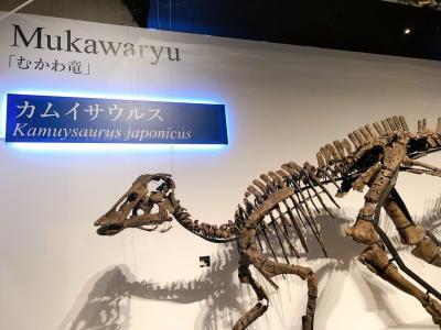 小学生男子のロマン炸裂!恐竜展を見に東京へ