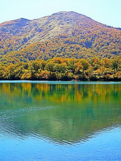 栗駒国定公園-3 須川湖(紅葉盛りの湖面)☆〈小町の郷〉弁当-キャンプ場で昼食